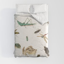 Insects, frogs and a snail Comforters