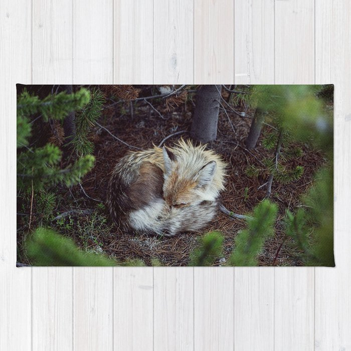 Sleeping Fox Rug By Kevinruss Society6
