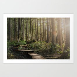 Adventure Nature Path Art Print