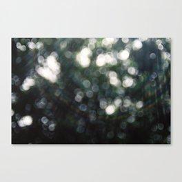 DAYLIGHT Canvas Print