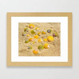 Sunrise Shells Framed Art Print