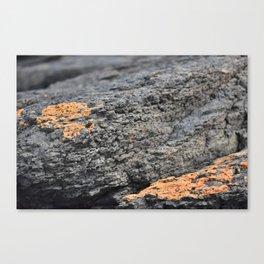 Orange you glad I didn't say rock Canvas Print