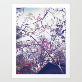 Red Bloom Art Print