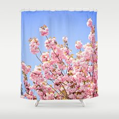 Pink Cherry Blossoms Against Blue Sky Shower Curtain