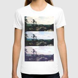 Kaleidoscope Park T-shirt