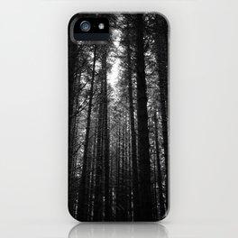 Norwegian woods - Bergen, Hordaland iPhone Case