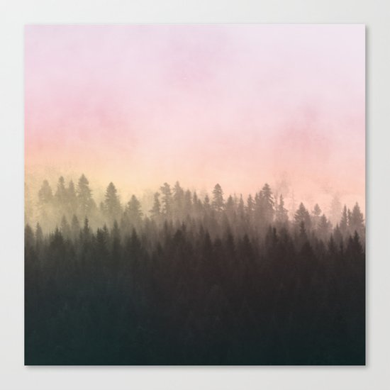 Foggy woods Canvas Print