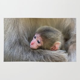 Infant Macaque at Snow Monkey Park, Japan Rug
