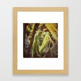 Prier Framed Art Print
