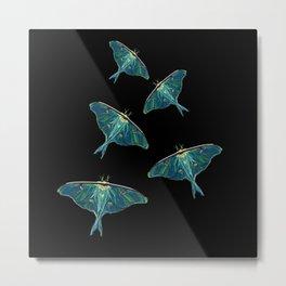 Moth Blue Butterfly Digital Art Metal Print
