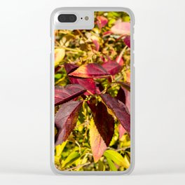 Red Autumnal leaves in Rhinecliff Clear iPhone Case