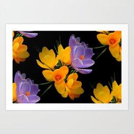 Think Spring - Crocuses Art Print