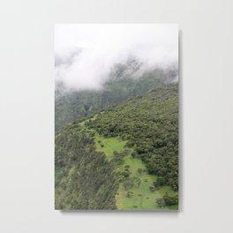 Hawaiian Valley Trail Metal Print