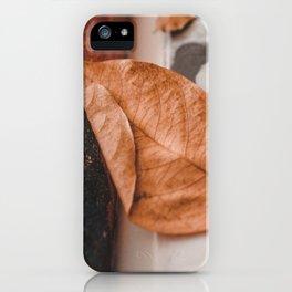 La vie iPhone Case