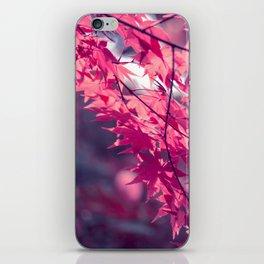 Autumn foliage in backlight iPhone Skin