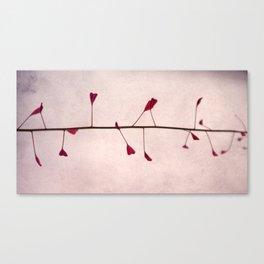 sweet heart Canvas Print