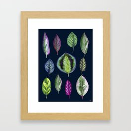 Colourful Tropical Leaves on Navy Framed Art Print