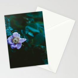 Wild Rose Stationery Cards