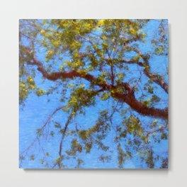 The Lilac Tree Metal Print