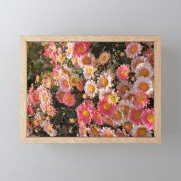 Blooming Pink Flowers Framed Mini Art Print