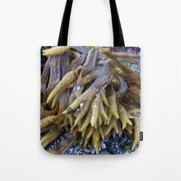 Seaweed bladders -  Bladder wrack  Tote Bag