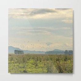 Birds and Mountains Metal Print