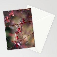Rose Hip Color Stationery Cards