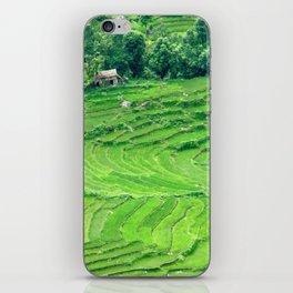 Mountainside rice paddies - Greg Katz iPhone Skin