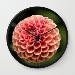 Kathryns Cupid Dahlia II Wall Clock