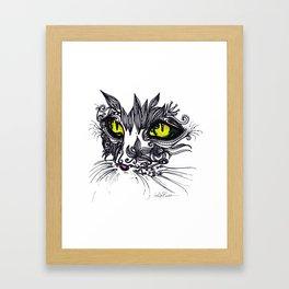 Intense Cat Framed Art Print