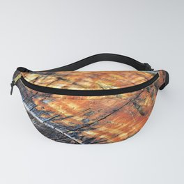 Macro Tree Stump Ring Arc Fanny Pack