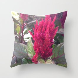 Plum Beautiful Throw Pillow