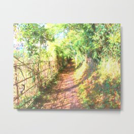 The Old Iron Fence In The Woods Metal Print