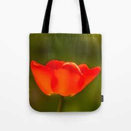 La tulipe orange Tote Bag