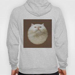 Round Cat - Yom Hoody
