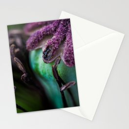 Slow decay Stationery Cards