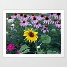 Solo Sunflower Art Print