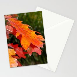 leaves in Autumn Stationery Cards