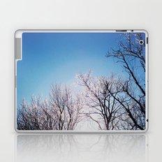 An Icy Winter Laptop & iPad Skin