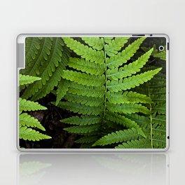framed fern Laptop & iPad Skin