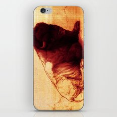 The Resting Of The Force iPhone & iPod Skin