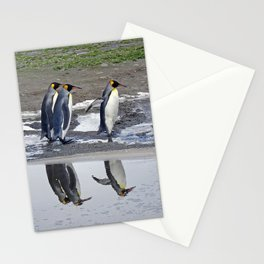 King Penguin Reflections Stationery Cards