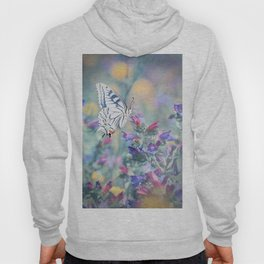 The Old World swallowtail butterfly Hoody