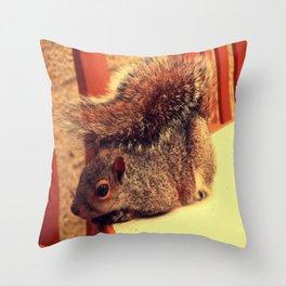 Casual Squirrel  Throw Pillow