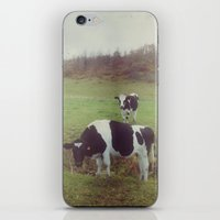 cows iPhone & iPod Skins featuring Rustic Cows by Olivia Joy StClaire