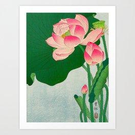 Ohara Koson Flowering Lotus 1930s Japanese Woodblock Print Vintage Historical Japanese Art Art Print