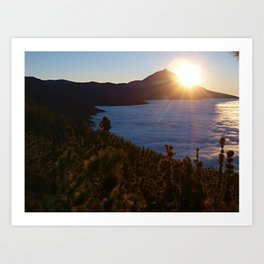 Sunset Canary Islands forest and Volcano Teide in Tenerife Art Print