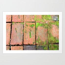 Bricks Walkway Art Print