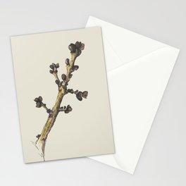 sprig Stationery Cards
