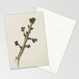 sprig Stationery Cards